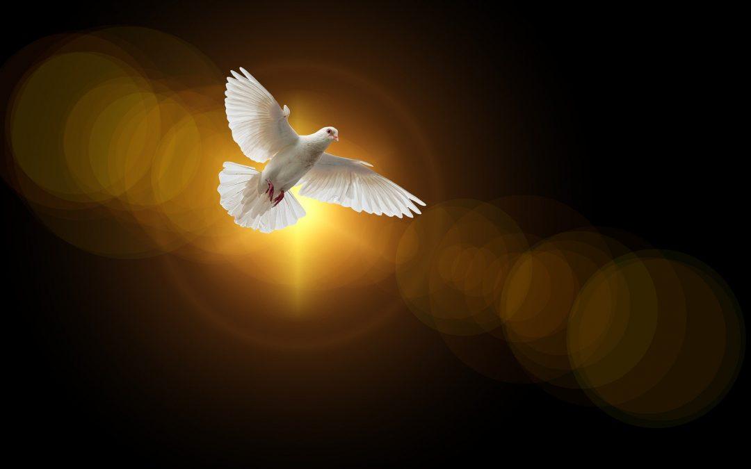 Seeking God's Spirit