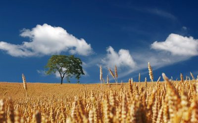 Breaking Through to Spiritual Maturity