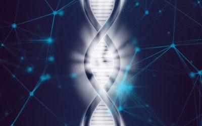 Epigenetics vs Genes